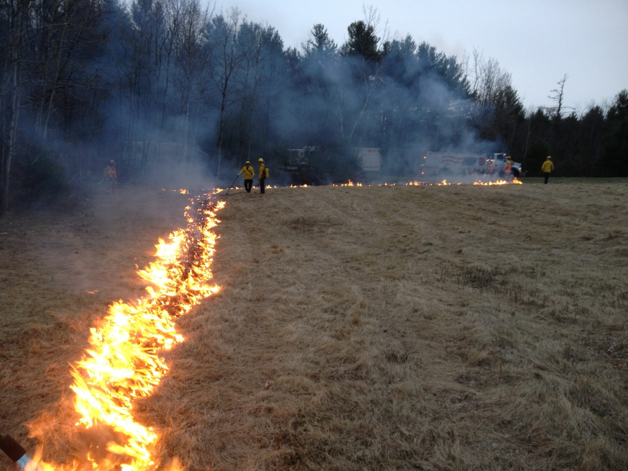 brush fire picture